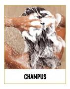 Champús para todo tipo de cabellos: volumen, encrespamiento, rizado