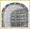 Monofilamento Parcial - Mono-coronilla/raya